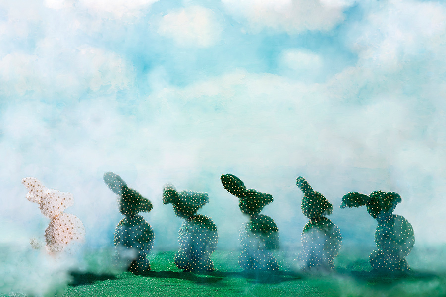 Six Bunnies, 2014 by Mara Trachtenberg